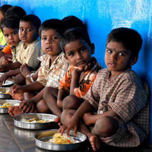 Give nutritious, free school meals
